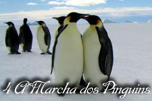 Pingvinenes_marsj_94656o.jpg