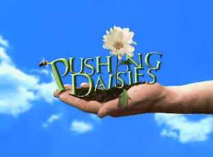 pushing-daisies.png